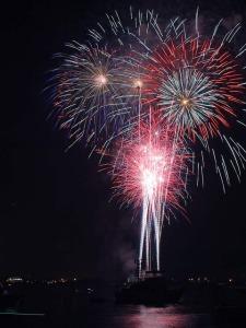 fireworks-3597_640